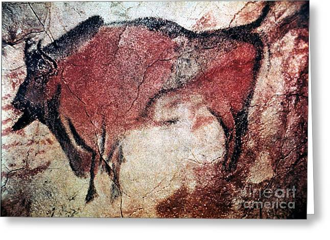 Paleolithic Greeting Cards - Cave Art Greeting Card by Granger