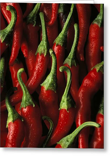 Hot Peppers Greeting Cards - Cayenne Greeting Card by Daniel Troy