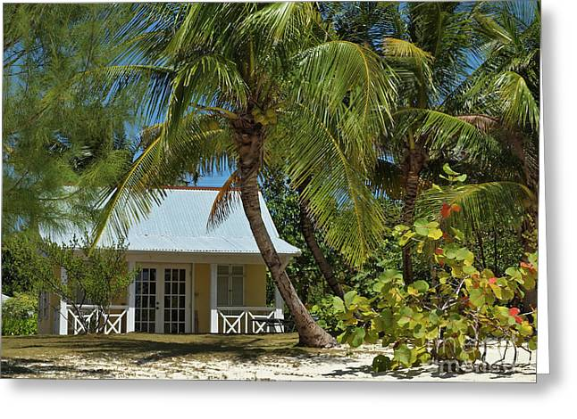 Cayman Houses Greeting Cards - Cayman Islands Beach House Greeting Card by James Brooker