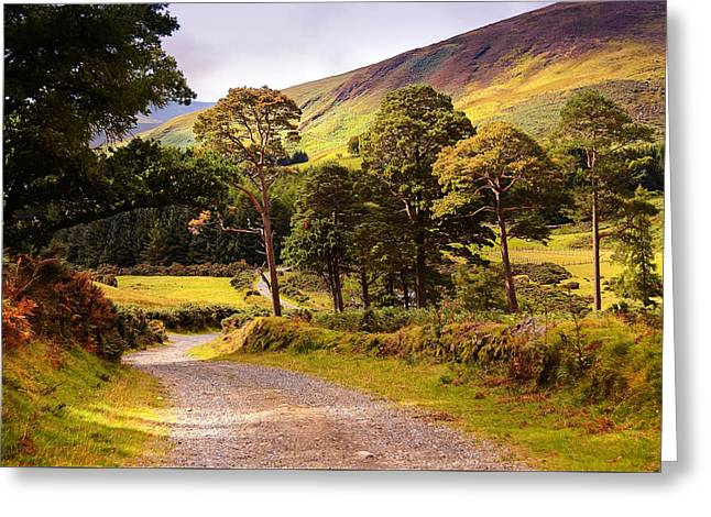 Souls Greeting Cards - Celtic Spirit. Wicklow Mountains. Ireland Greeting Card by Jenny Rainbow