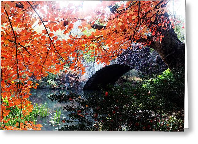Autumn Photographs Greeting Cards - Central Park New York City Greeting Card by Mark Ashkenazi
