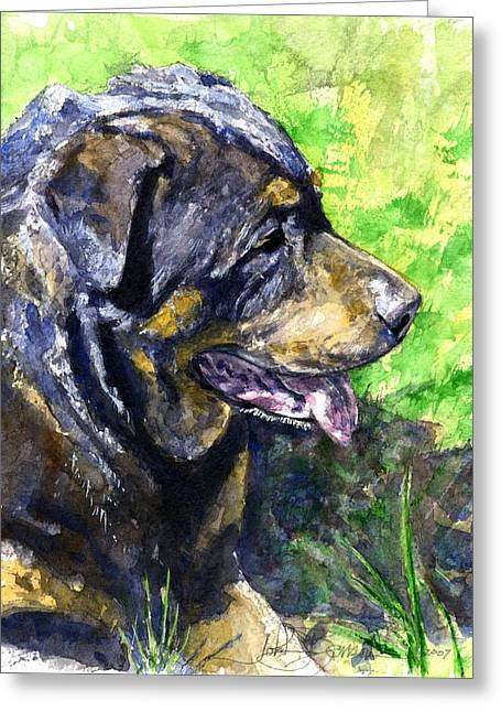 Rottweiler Dog Greeting Cards - Chaos Greeting Card by John D Benson