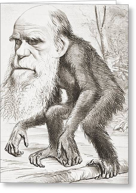 Portray Greeting Cards - Charles Darwin 1809 - 1882. English Greeting Card by Ken Welsh