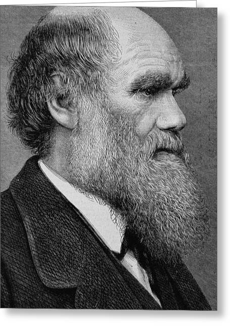 Collar Greeting Cards - Charles Darwin Greeting Card by English School