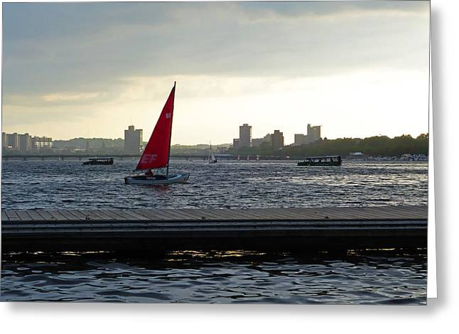 Boston Ma Greeting Cards - Charles River Sailboat Greeting Card by Toby McGuire