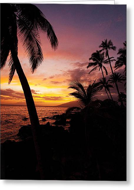 Seacape Greeting Cards - Charly Young Sunset Greeting Card by James Roemmling
