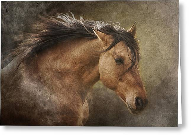 Wild Horses Greeting Cards - Chase the Wind Greeting Card by Ron  McGinnis