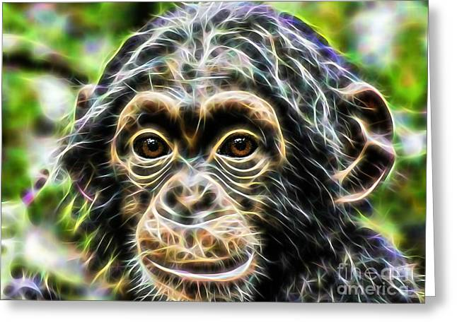 Chimpanzee Greeting Cards - Chimpanzee Collection Greeting Card by Marvin Blaine