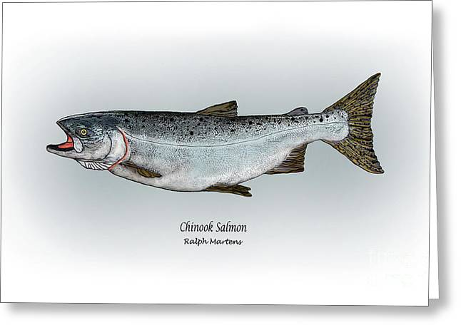 Chinook Salmon Greeting Card by Ralph Martens