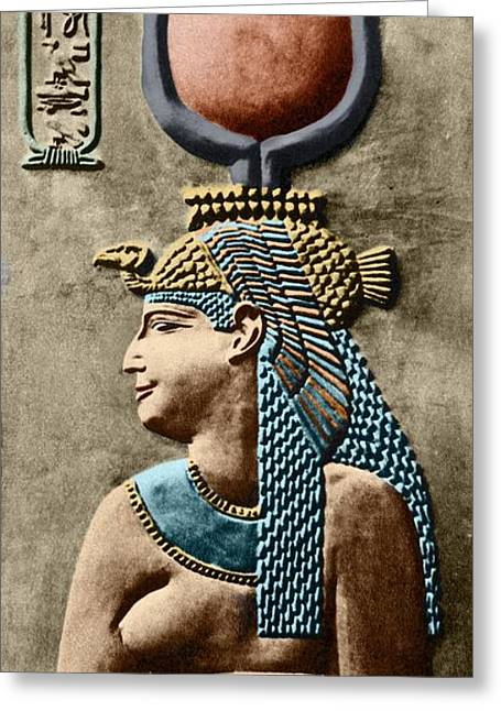 Hathor Greeting Cards - Cleopatra Vii Greeting Card by Sheila Terry