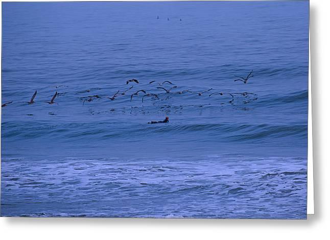 Exciting Surf Greeting Cards - Coastal Patrol  Greeting Card by Betsy C Knapp