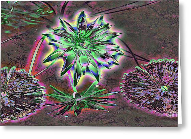 Water Garden Tapestries - Textiles Greeting Cards - Colorful Lily Greeting Card by Edna Weber