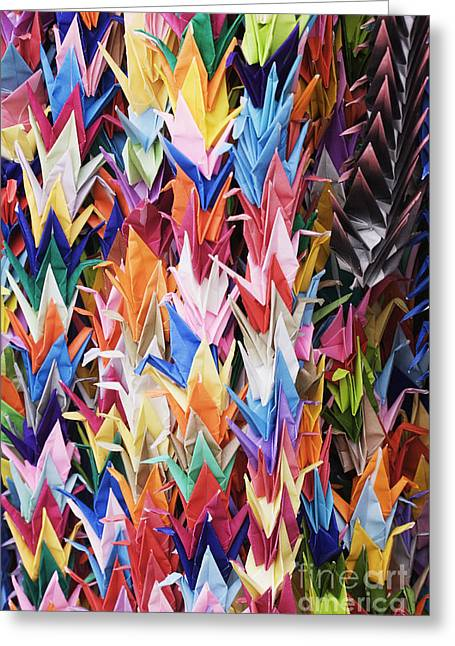 Consumer Greeting Cards - Colorful Origami Cranes Greeting Card by Jeremy Woodhouse