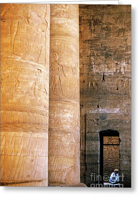 Archaeology Archeological Greeting Cards - Columns with hieroglyphs depicted Horus at the Temple of Edfu Greeting Card by Sami Sarkis
