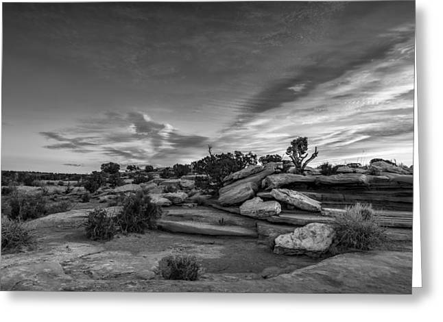 Coming Together II Greeting Card by Jon Glaser