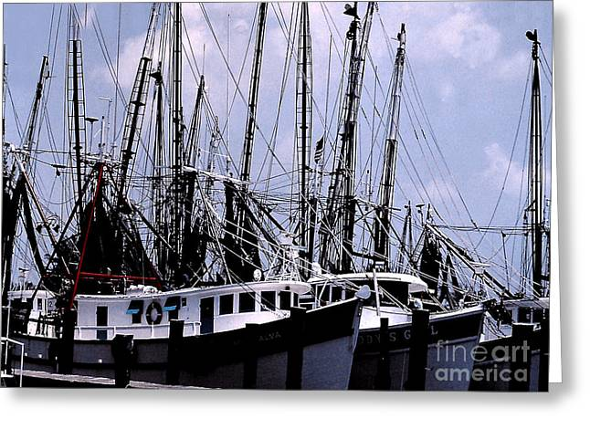 Docked Boats Greeting Cards - Commercial Trawling Fleet - Gloucester MA Greeting Card by Merton Allen