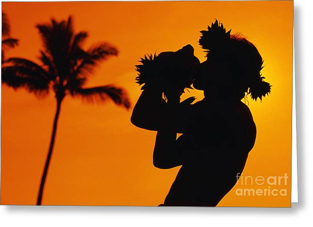 Aloha From Hawaii Greeting Cards - Conch Shell Blower Greeting Card by Ron Dahlquist - Printscapes