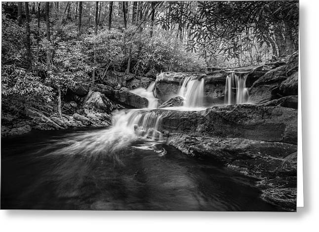 Cool Waters In Tremont Greeting Card by Jon Glaser