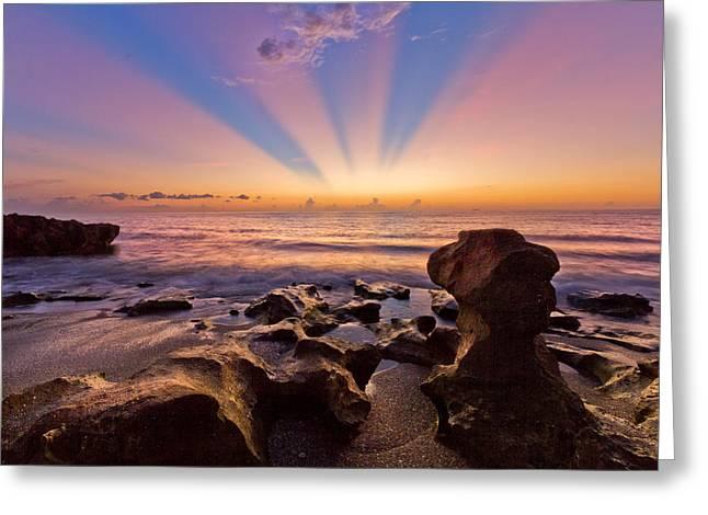 Coral Cove Greeting Card by Debra and Dave Vanderlaan