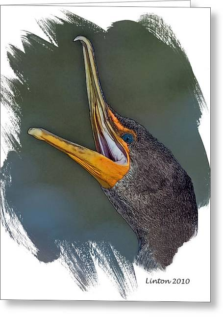 Double-crested Cormorant Greeting Cards - Cormorant Greeting Card by Larry Linton
