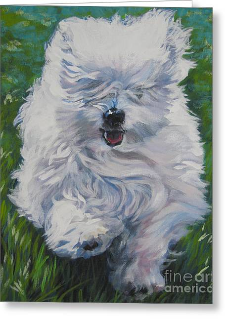 Coton Greeting Cards - Coton De Tulear  Greeting Card by Lee Ann Shepard
