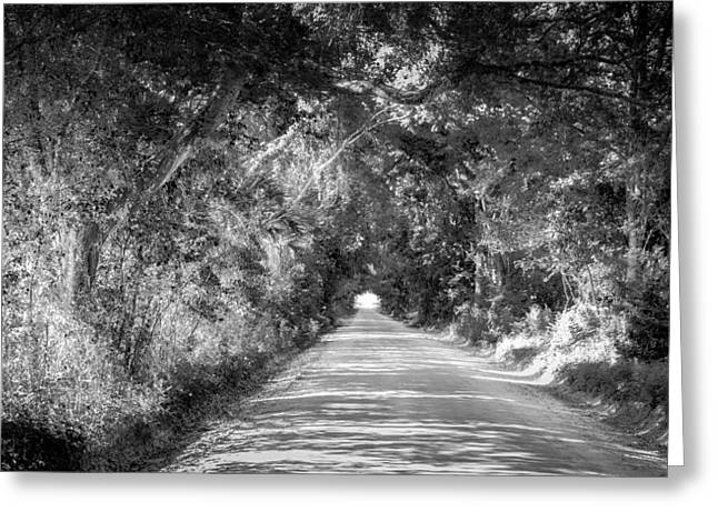Country Dirt Roads Greeting Cards - Country Road Greeting Card by Louis Ferreira