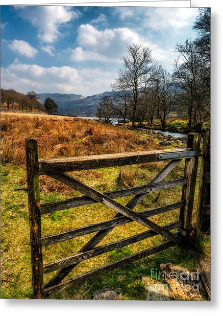 Hinged Greeting Cards - Countryside Gate Greeting Card by Adrian Evans