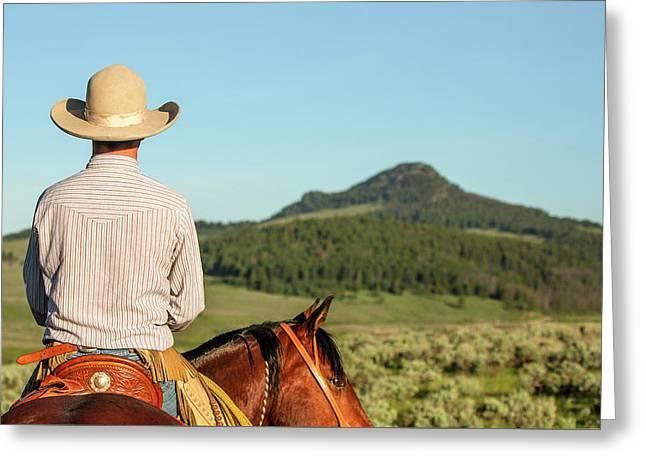 Cowboy Back Greeting Card by Todd Klassy