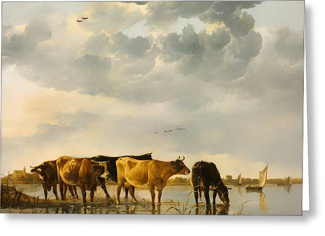 Sailboat Art Greeting Cards - Cows In A River Greeting Card by Aelbert Cuyp