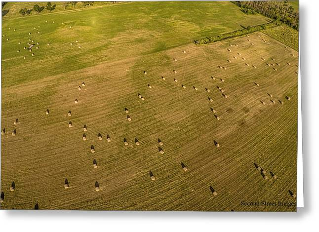 Haybales Greeting Cards - Craigs hayfield Greeting Card by Jack Johnson