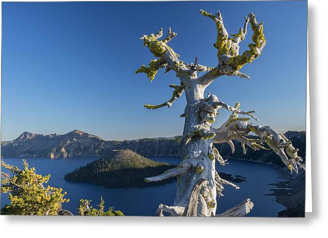 Rom Greeting Cards - Crater Lake Greeting Card by Christian Heeb