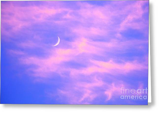 Lunar Crescent Greeting Cards - Crescent Moon Behind Cirrus Cloud in the Evening Greeting Card by Gordon Wood