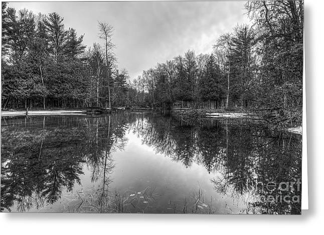 Crystal River Greeting Card by Twenty Two North Photography