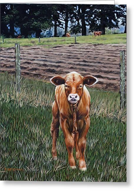 Rick Mckinney Greeting Cards - Curious Calf Greeting Card by Rick McKinney