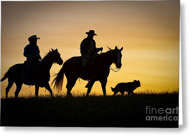 Backlit Greeting Cards - Day is Done Greeting Card by Sandra Bronstein