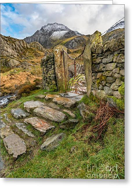 Decorative Iron Gate  Greeting Card by Adrian Evans