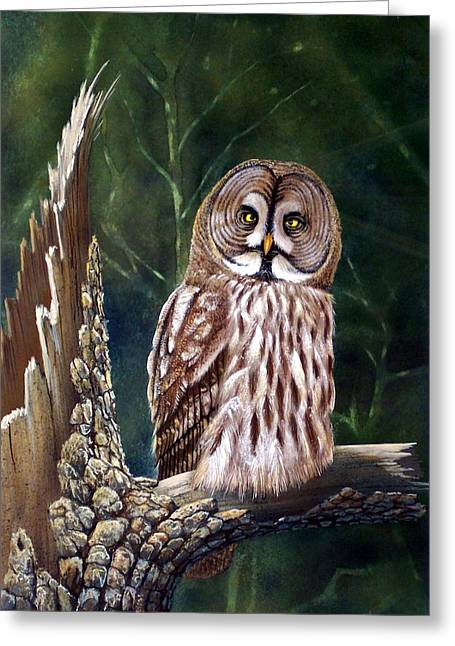 Frank Wilson Greeting Cards - Deep In The Woods Greeting Card by Frank Wilson
