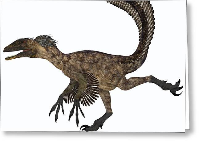 Deinonychus Greeting Cards - Deinonychus Dinosaur Greeting Card by Corey Ford