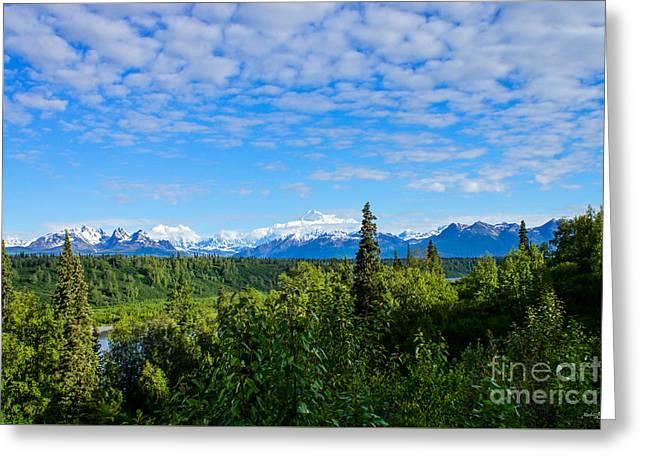 Snow Tree Prints Greeting Cards - Denali Mountain Range Greeting Card by Jennifer White