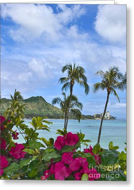Surfing Photos Greeting Cards - Diamond Head And Waikiki Greeting Card by Tomas del Amo - Printscapes