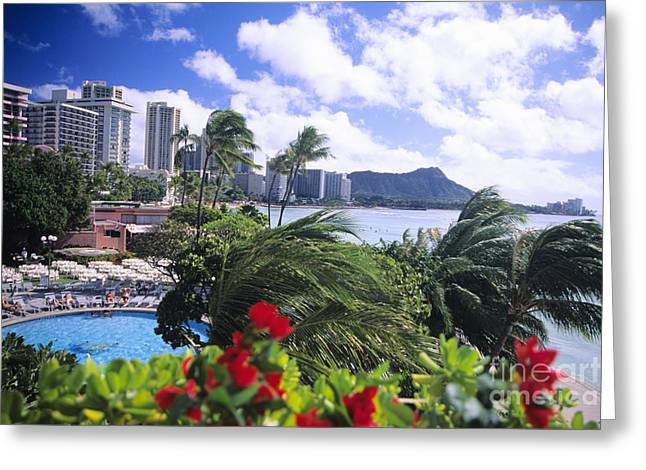 Sunbathing Greeting Cards - Diamond Head Greeting Card by Tomas del Amo - Printscapes