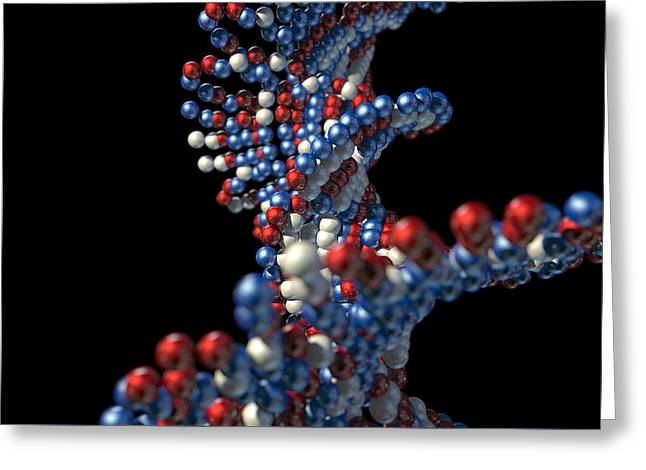 Molecular Greeting Cards - DNA Atom Stem Greeting Card by Allan Swart