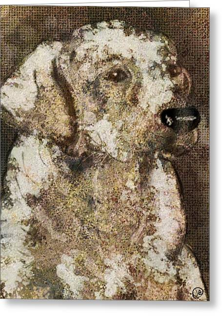 Dogs Digital Greeting Cards - Dog  Greeting Card by Julie Atkins