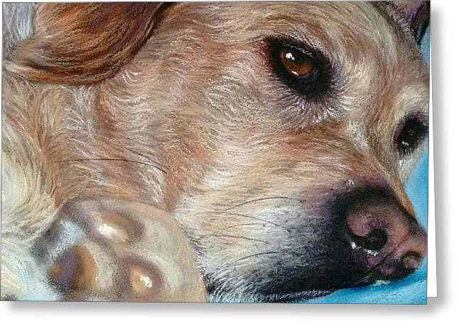 Labradors Pastels Greeting Cards - Dog Tired Greeting Card by Linda Eversole