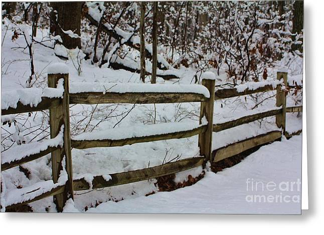 Log Cabin Interiors Greeting Cards - Dont Fence Me In Greeting Card by Chuck  Hicks