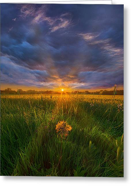 Green Leafs Greeting Cards - Dont Stop Believin Greeting Card by Phil Koch