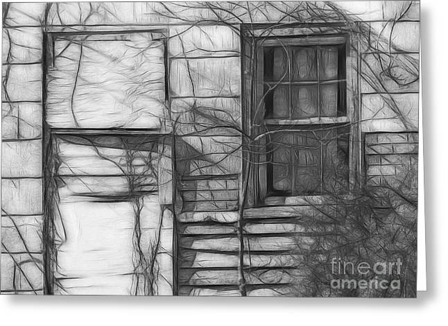 Tin Roof Greeting Cards - Door and Window Greeting Card by Scott Cameron