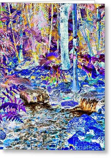 Water Garden Tapestries - Textiles Greeting Cards - Double Waterfall Greeting Card by Edna Weber