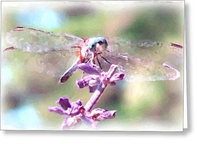 Dragonflies Pastels Greeting Cards - Dragonfly Greeting Card by Janet Pugh