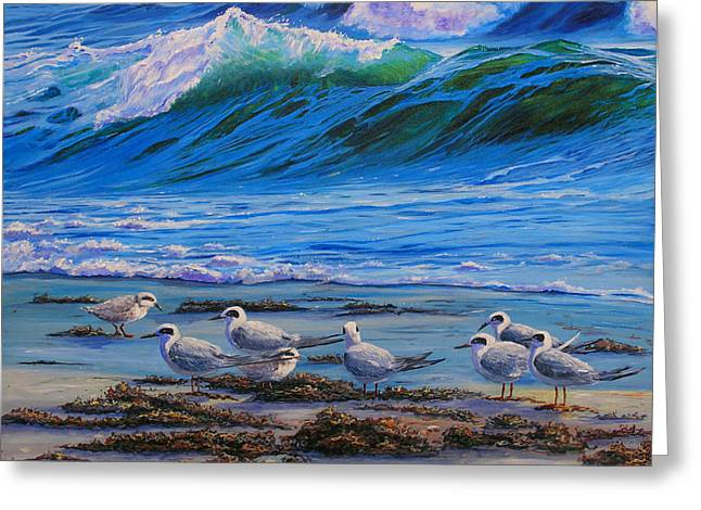 Tern Paintings Greeting Cards - Edge of the Sea Greeting Card by Sharon Kearns